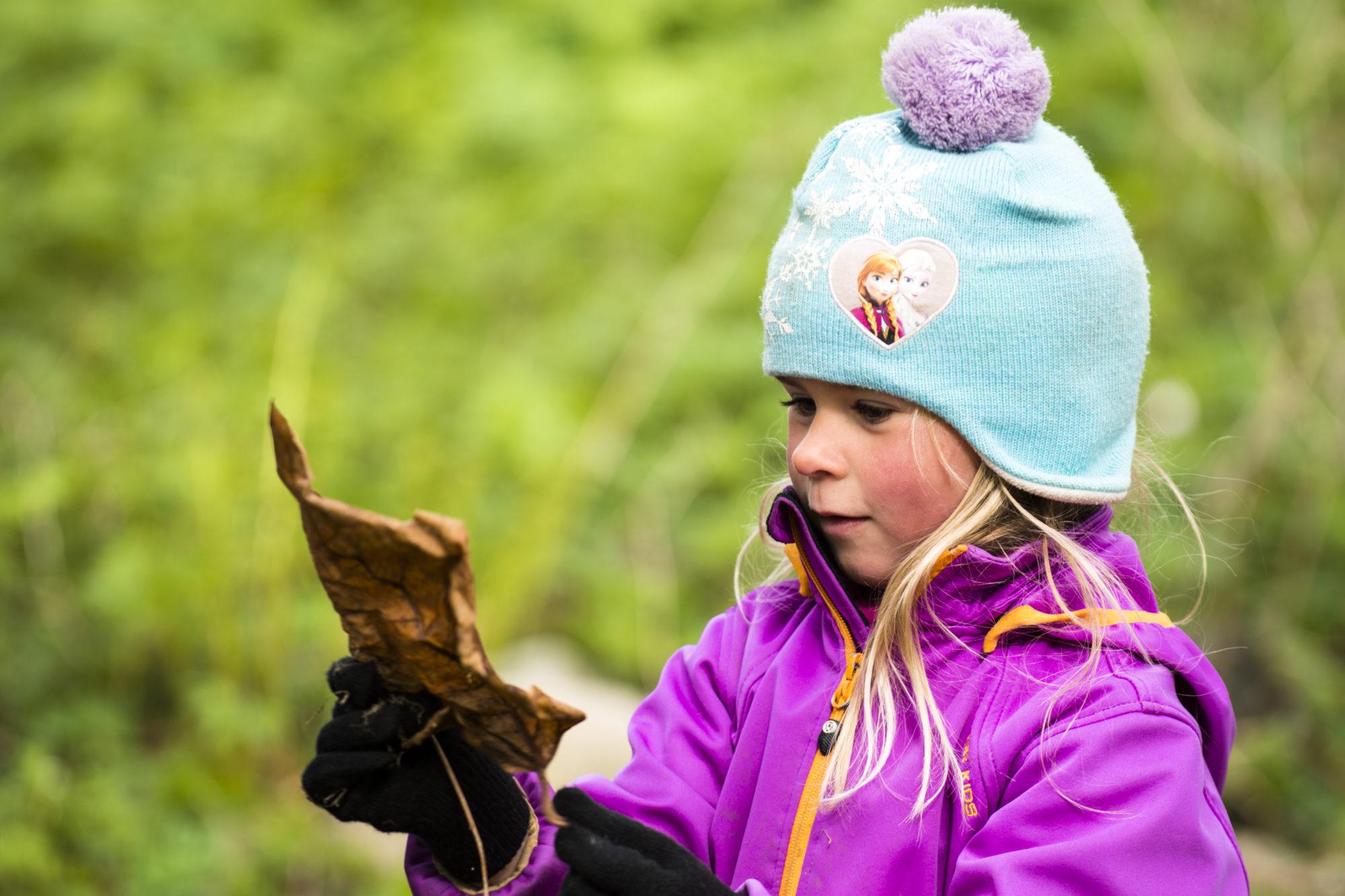 Barnehagebarn studerer løv