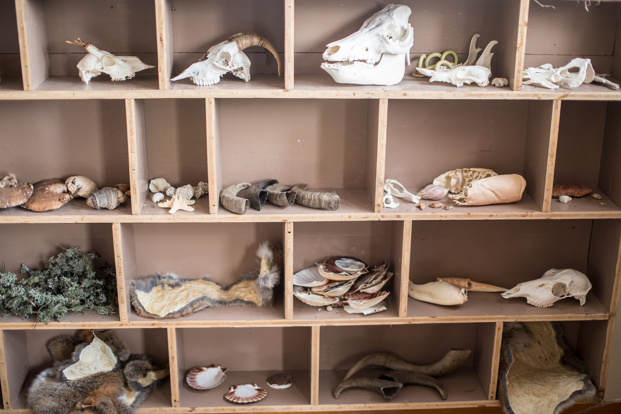 Hyller med ulike artefakter