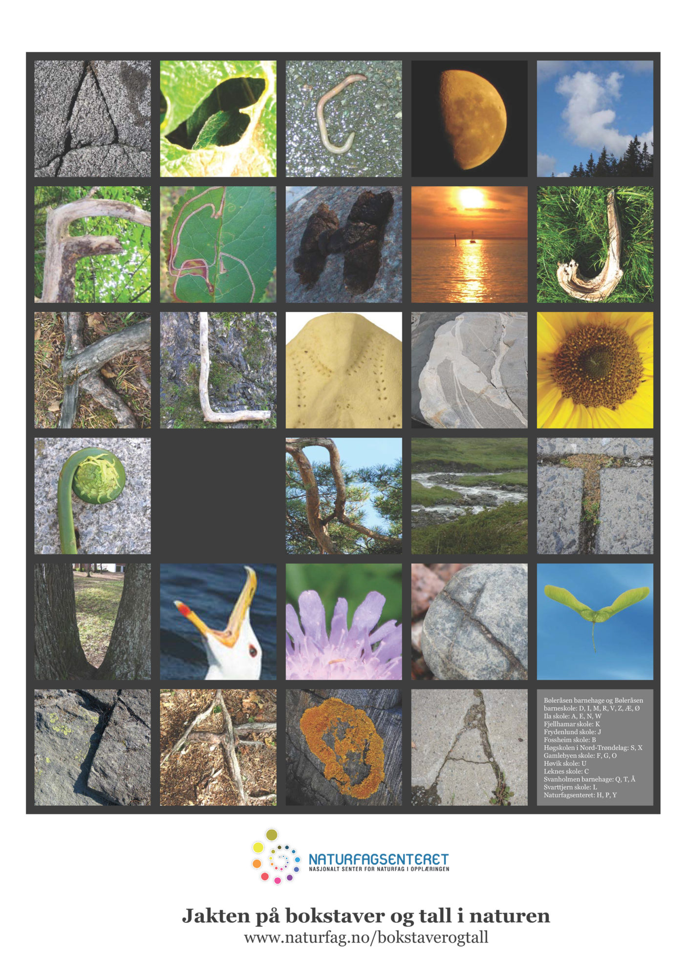 Plakat fra Naturfagsenteret om jagt på bokstaver og tall i naturen