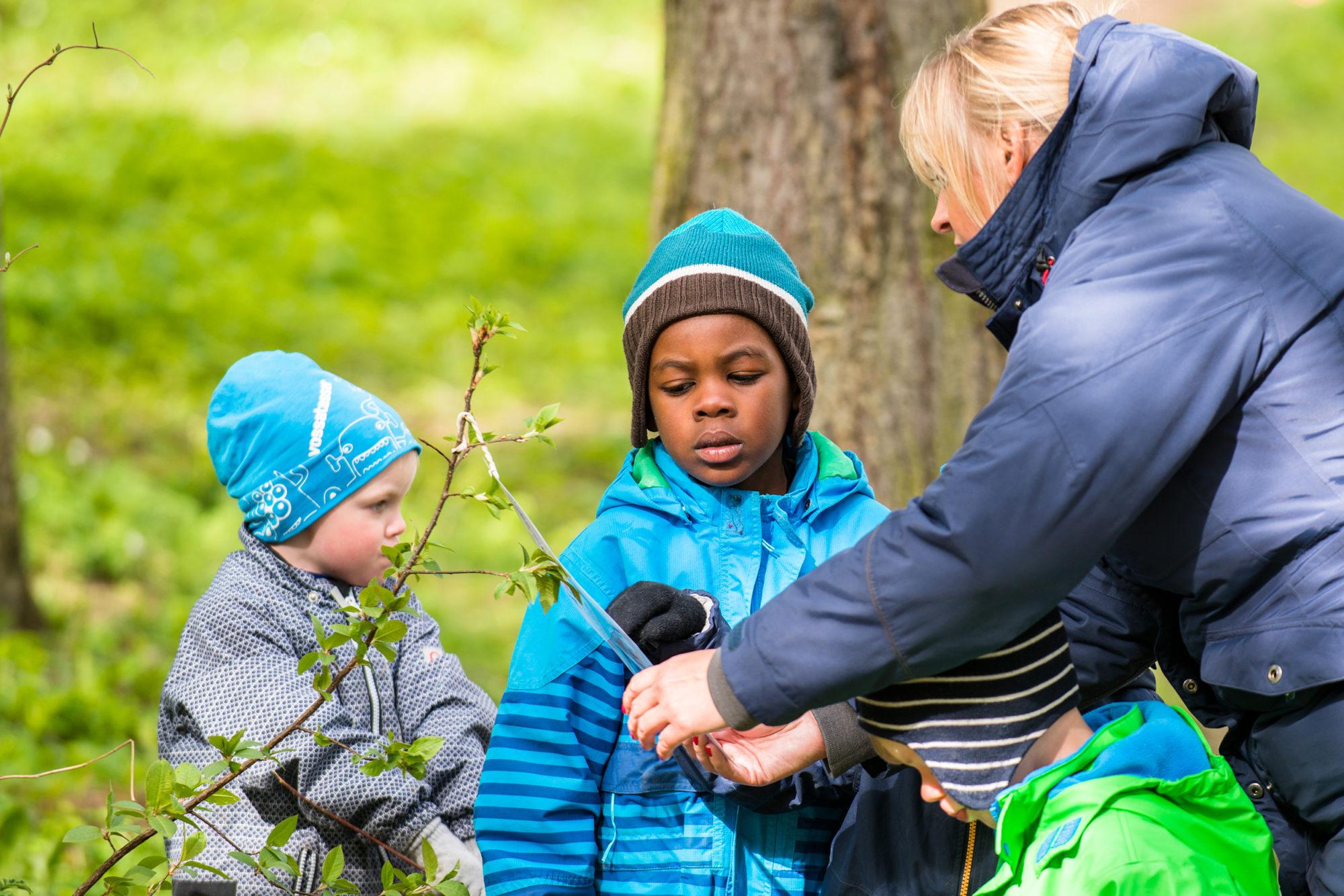 Barnehagegutter i naturen