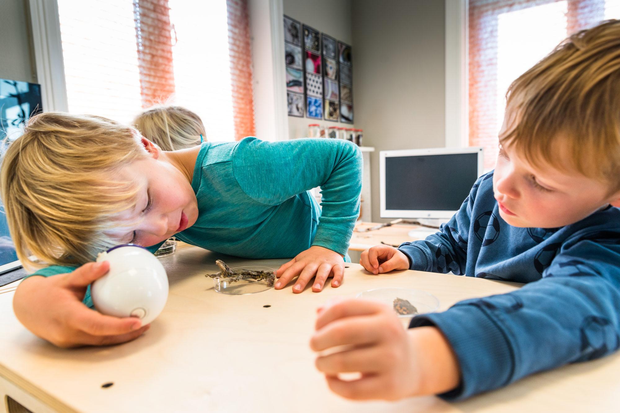 Barnehagebarn utforsker ved hjelp av digitalt mikroskop