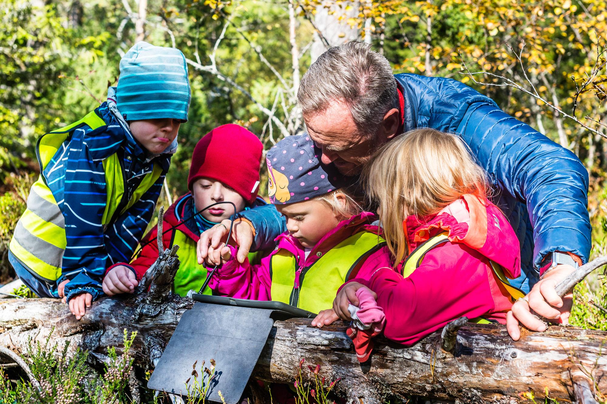 Voksen og barnehagebarn undersøker en maurtue med undersøkelseskamera