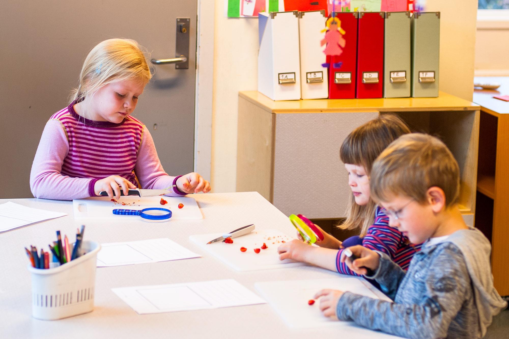 Lærestasjon i ressursen «Veiledet skriving med de yngste»