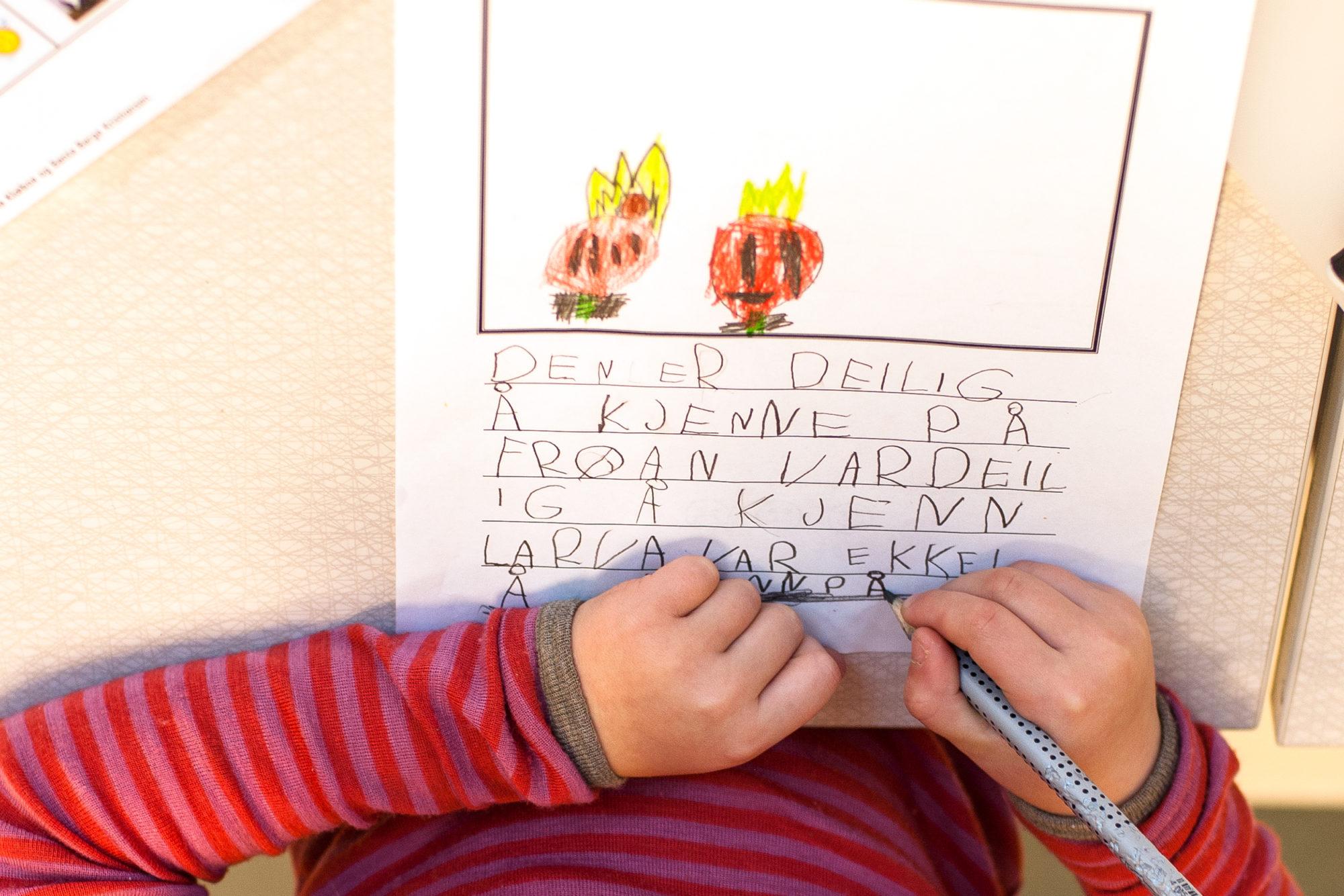 Elevtekster til ressursen «Veiledet skriving med de yngste»