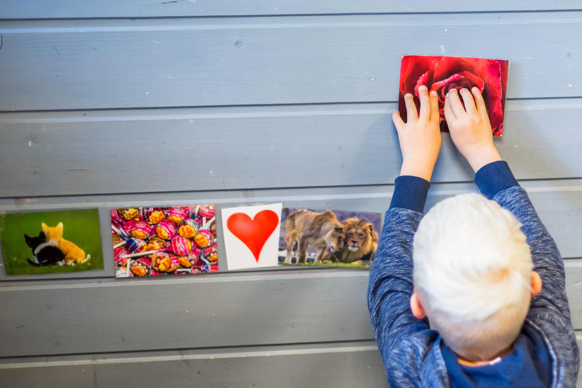 Barnehagegutt fester et bilde av en rose på veggen