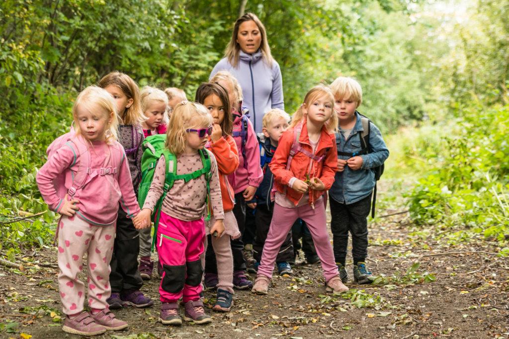 En barnehage på tur i skogen