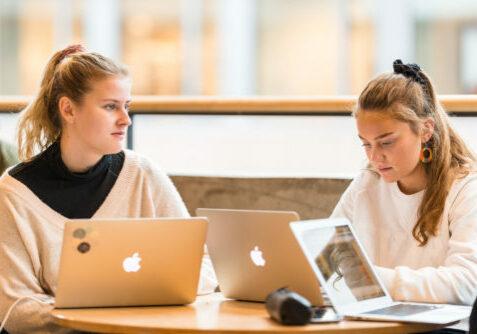 To vgs-elever som jobber bak hver sin skjerma